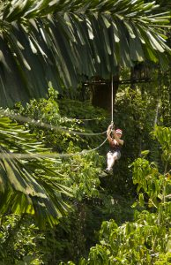costa rica zipline canopy tour