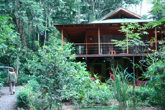 Top 5 most iconic costa rica experiences for Jungle house costa rica