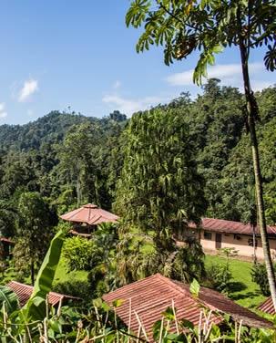 volcano-jungles-day3