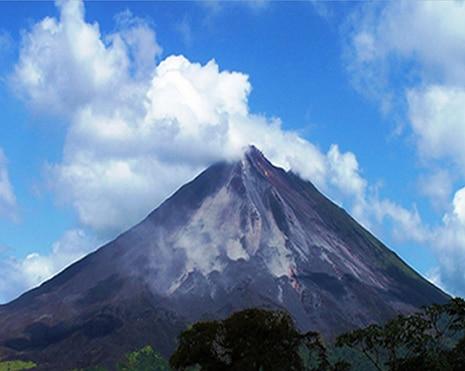 volcano-jungles