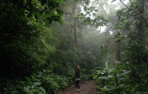 Hiking Monteverde Cloud Forest