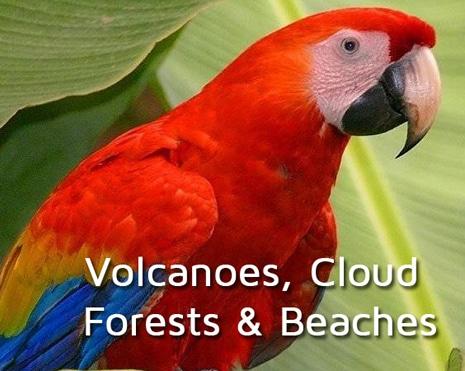 principal-volcano