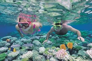 Marino Ballena National Park snorkeling