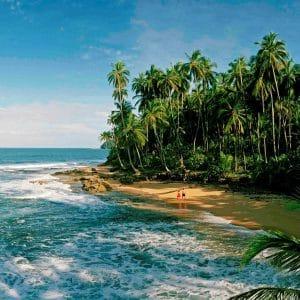 Caribbean coast green season