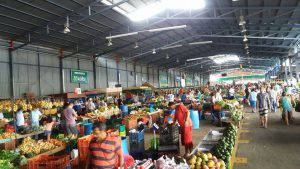 Costa Rica farmers markets
